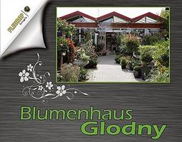 Blumenhaus Glodny in Cottbus Sielow