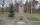 Friedhof Willmersdorf Cottbus
