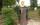 Friedhof Saspow in Cottbus